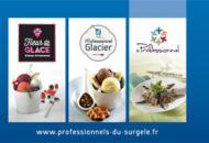 Frozen Food Professional Presentation